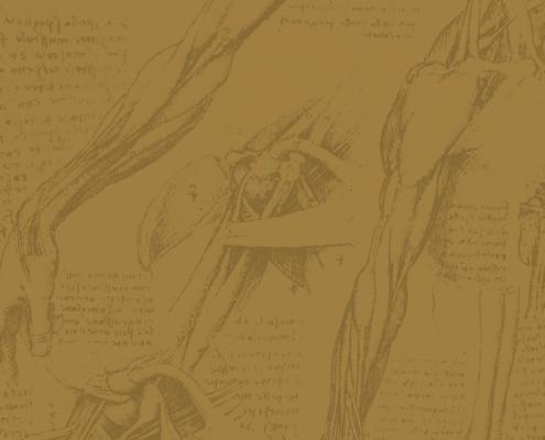 Seminario di studio su Leonardo da Vinci